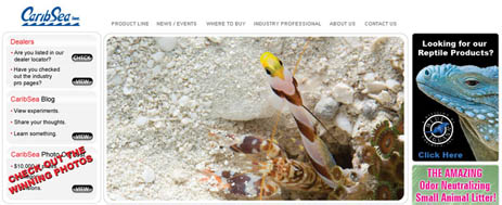 caribsea homepage