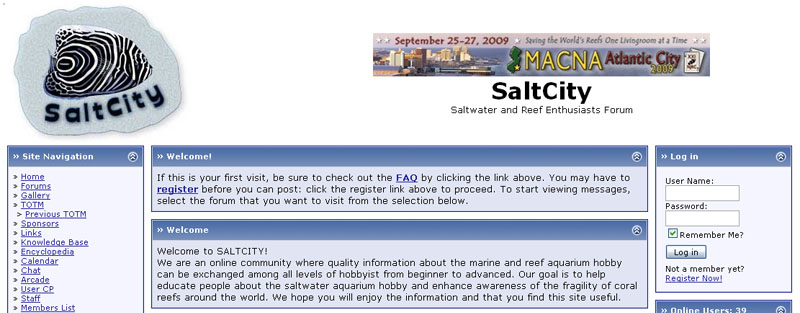 salt-city-home-page