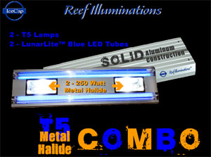 reef-illuminations-l