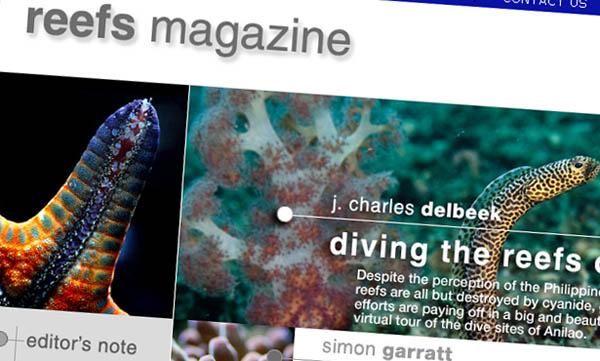 reefmagazine