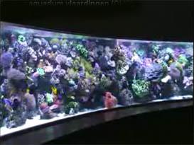 6 meter aquarium vlaardingen