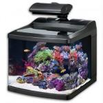 Oceanic BioCube HQI Metal Halide Nano Aquarium