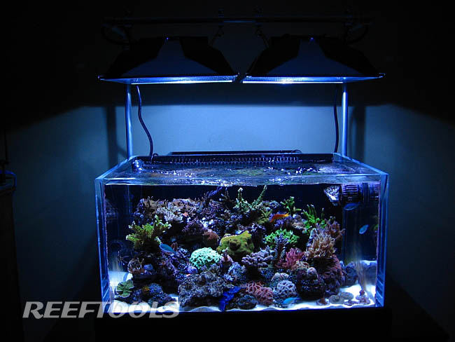 Reef Tools Reef Aquarium Reef Tank Reef Product