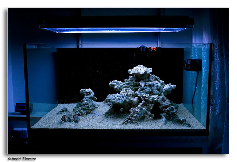 Minimalist aquascape how much rock is this reef for How much does a 20 gallon fish tank weigh
