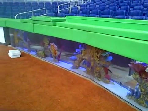 Eleanorave take me out to the ballpark for Marlins fish tank